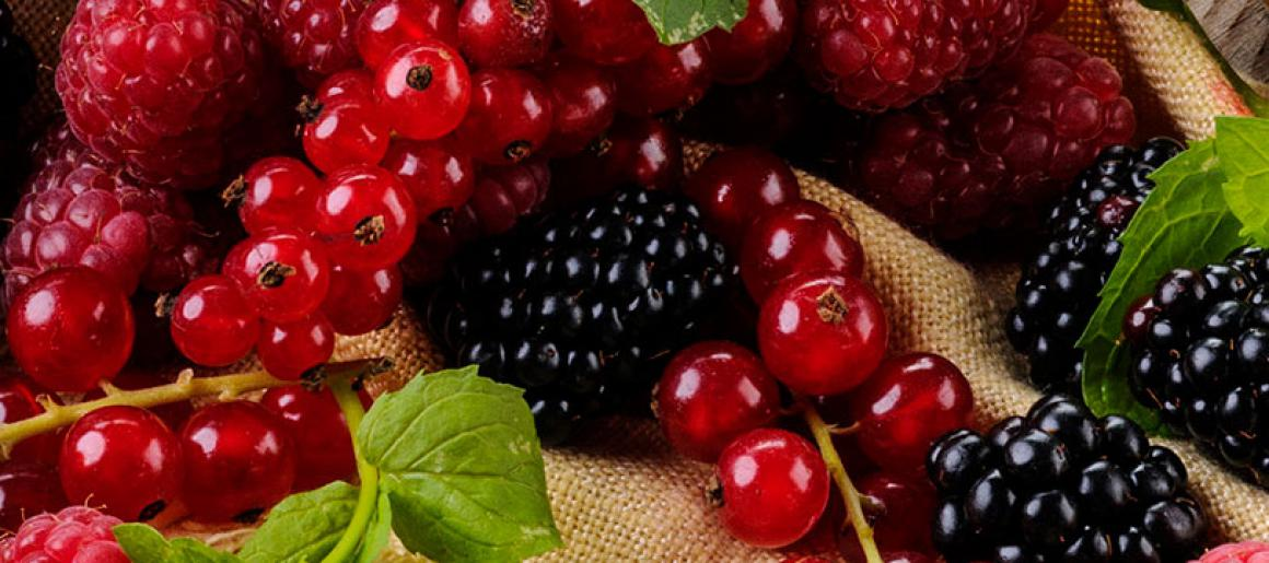 fruits-rouges.jpg