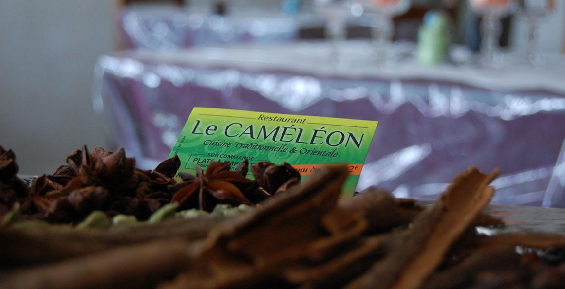 cameleon-3.jpg